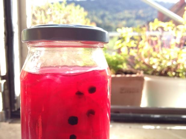 Rote Zwiebeln im Glas